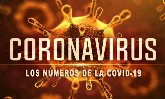 LOS NÚMEROS DEL COVID-19