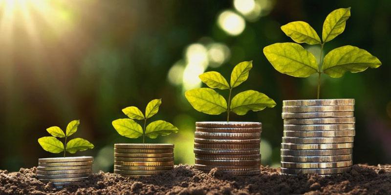 Concepto financiero y crecimiento de cuentas.