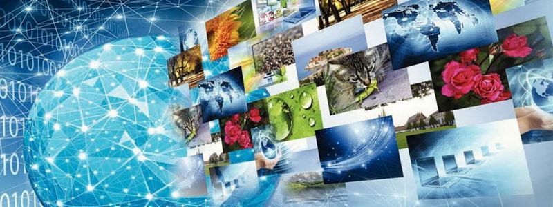 contenido-en-la red-global