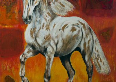 el caballo y su espacio II