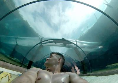 Tunel bajo agua del Siam Park